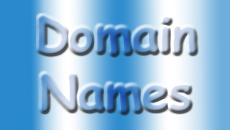 domain names box